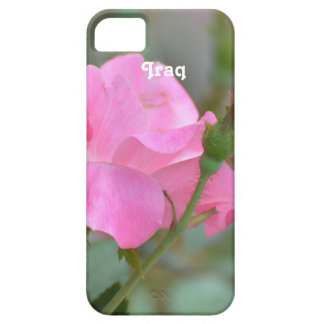 Pastel Pink Rose in Iraq iPhone SE/5/5s Case