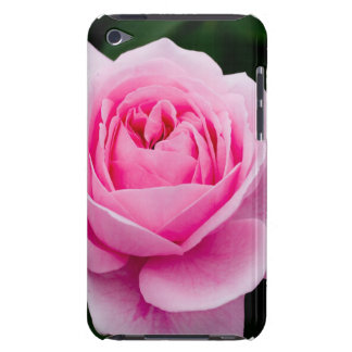 Pastel Pink Rose iTouch Case Barely There iPod Cover