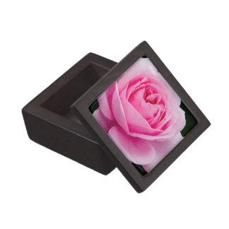 Pastel Pink Rose Premium Gift Box