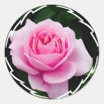 Pastel Pink Rose Stickers