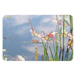 Pastel Pond Magnets
