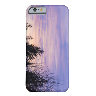 Pastel Purple Sunset Tree Silhouette Phonecase Barely There iPhone 6 Case