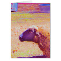 Pastel Rainbow Sheep Card