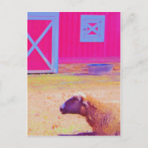 Pastel Rainbow Sheep Postcard