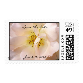 pastel rose save the date wedding stamp