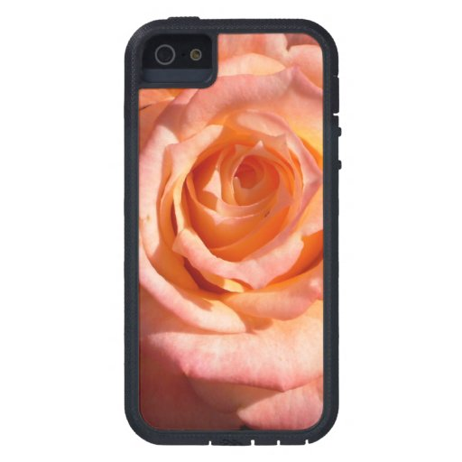 Pastel Roses iPhone 5/5S Covers