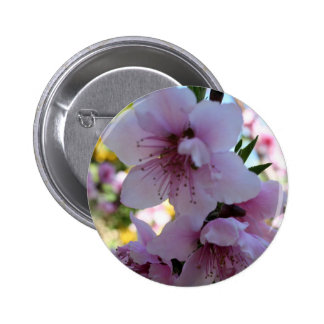 Pastel Shades of Peach Tree Blossom Pinback Buttons