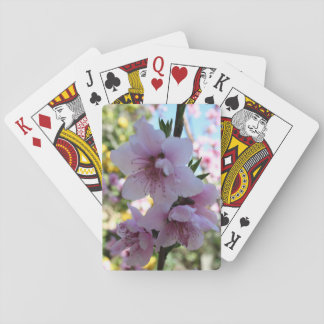 Pastel Shades of Peach Tree Blossom Card Deck