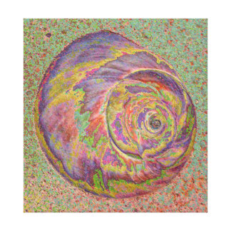 Pastel Shell Wrapped Canvas Print