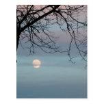 Pastel Sky Postcard