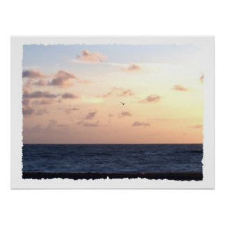 Pastel sunrise over the ocean w/passing seagull poster
