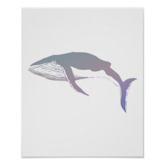 pastel whale design poster