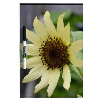 Pastel Yellow Sunflower Dry Erase Board