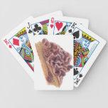 Pasteles daneses del postre barajas de cartas