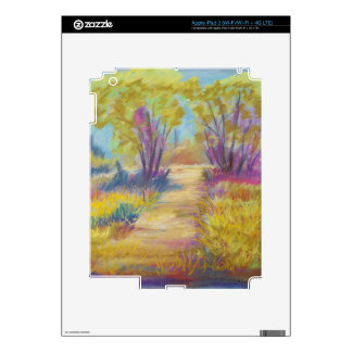 PastelPath.jpg iPad 3 Skins