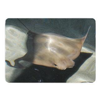 Pastinaca de la natación invitación 12,7 x 17,8 cm