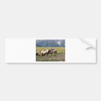 Pasto alpino con las vacas pegatina para auto