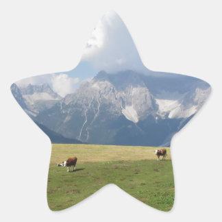 Pasto alpino pegatina en forma de estrella