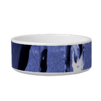 pasto azul del caballo en imagen equina tazón para comida gato