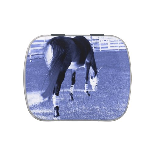 pasto azul del caballo en imagen equina frascos de caramelos