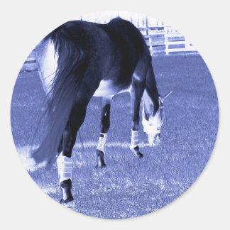 pasto azul del caballo en imagen equina pegatina redonda