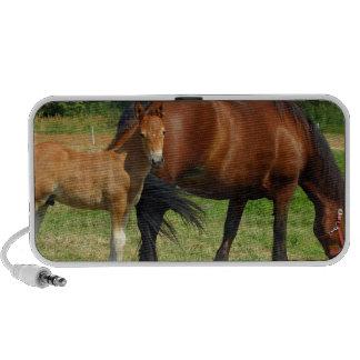 Pasto de altavoces del diseño del caballo