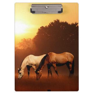 Pasto de caballos en el amanecer
