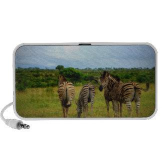 Pasto de cebras africanas notebook altavoz