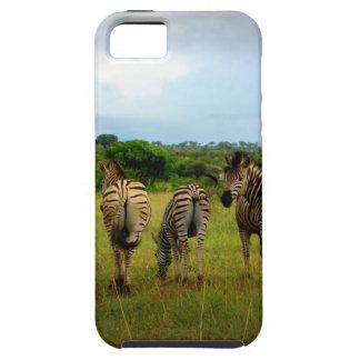 Pasto de cebras africanas iPhone 5 Case-Mate funda