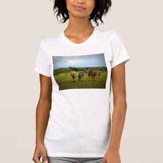 Pasto de cebras africanas camiseta