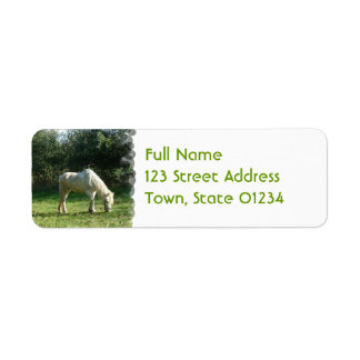 Pasto de la etiqueta de correo del caballo blanco etiqueta de remite