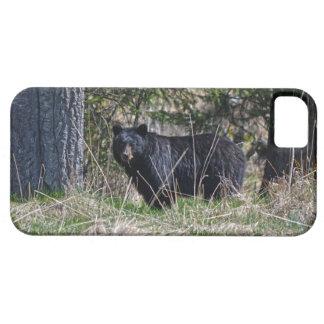 Pasto de la foto salvaje de la fauna del oso negro funda para iPhone SE/5/5s