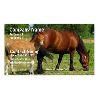 Pasto de la tarjeta del negocio familiar del cabal tarjetas de visita