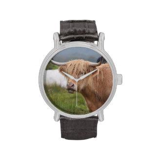Pasto de la vaca de la montaña relojes de mano