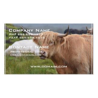 Pasto de la vaca de la montaña tarjeta de visita