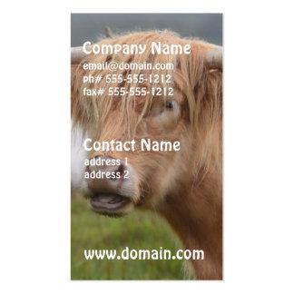 Pasto de la vaca de la montaña tarjetas de visita