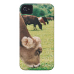 Pasto de la vaca del jersey Case-Mate iPhone 4 coberturas