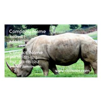 Pasto de las tarjetas de visita blancas del rinoce
