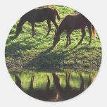 Pasto de los pegatinas de los pares del caballo etiqueta redonda