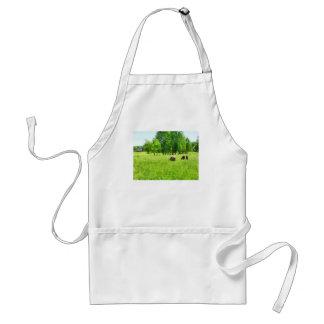 Pasto de ovejas delantales