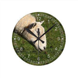 Pasto de ovejas reloj redondo mediano