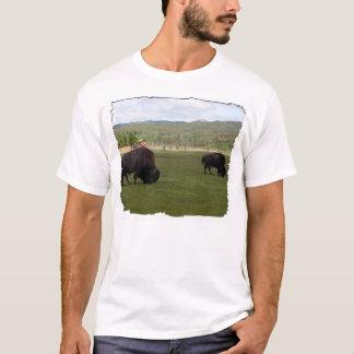 Pasto del bisonte de madera playera