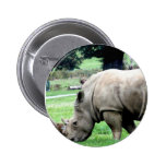 Pasto del botón blanco del rinoceronte pins