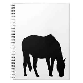 Pasto del caballo