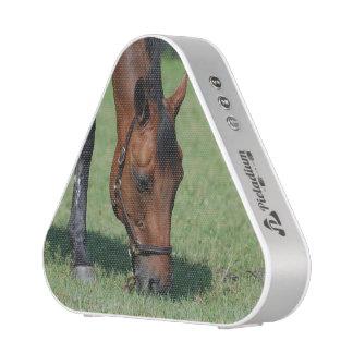 Pasto del caballo cuarto altavoz bluetooth