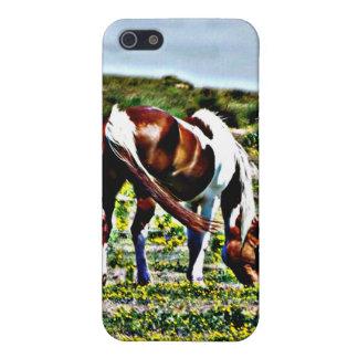 Pasto del caballo de la pintura con las flores ama iPhone 5 protectores