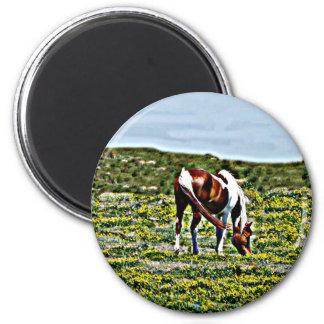 Pasto del caballo de la pintura con las flores ama imán redondo 5 cm
