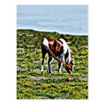 Pasto del caballo de la pintura con las flores ama tarjetas postales