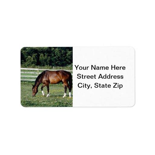 Pasto del caballo etiqueta de dirección