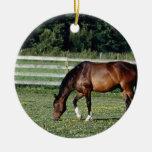 Pasto del caballo ornaments para arbol de navidad